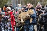 В Харьковском зоопарке появился львёнок