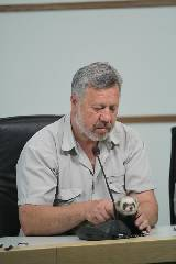 Харьковский хорек Фред предсказывает победу Украине