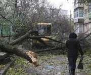Непогода унесла жизни украинцев