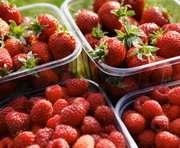 Целебные свойства красных ягод