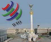ВТО: как избежать «серой» зоны