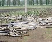 Нестор Шуфрич: В Новобогадновке возможны новые взрывы