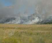 В Донецкой области горела степь