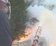Масштабный пожар в лесах Харьковщины