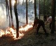 Лесной пожар на Харьковщине смогли потушить только самолеты