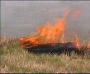 В Харьковской области сгорело 15 га ячменя