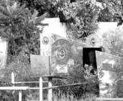 Въезд на кладбища Киева стал платным