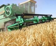 Урожай-2010: данные на 1 сентября