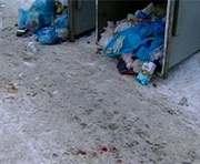 Резонансное убийство в Харькове: новые подробности
