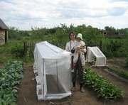Харьковские хозяйства способны обеспечить горожан овощами