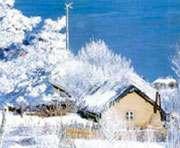 Погода в Украине: крещенские морозы пожалуют к Старому Новому году