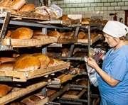 В Харьковской области будет два социальных сорта хлеба