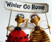 Погода в Харькове на выходные: зима возвращается