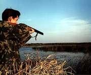 За убийство лосихи охотник дорого заплатит