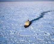 В Антарктике обнаружили нефть