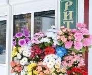 Решение о создании в Харькове областного «Ритуала» видится преждевременным
