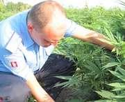 «Нарик»-адвокат: в Харькове поймали юриста в кустах