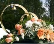 В Харькове будут гулять свадьбы на новом уровне
