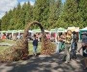 В саду Шевченко пройдет выставка цветов ко Дню Харькова