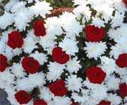 В Харькове открылась цветочная ярмарка