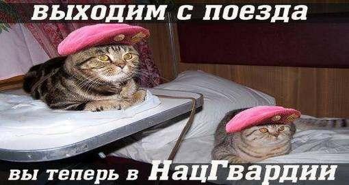 Силовая мобилизация в Харькове: сняли – и в Нацгвардию