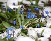 Когда в Украину придет весна