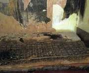 В Харьковской области на пожаре пострадала пенсионерка