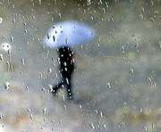 Погода в Харькове на выходные