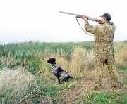 Чего добиваются харьковские охотники