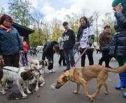 В Харькове пройдет благотворительная выставка животных