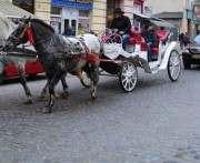 В Харькове иномарка столкнулась с «Золушкиной каретой»