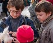 В Харьковском горсовете обсудили проблемы вынужденных переселенцев