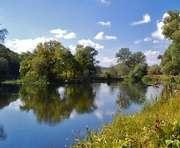 Что обнаружили в реке Мерле на Харьковщине