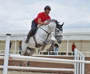В Харькове возрождают конный спорт