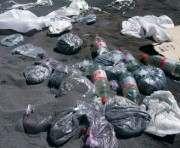 В Харькове активисты уничтожили три тонны мака