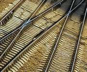 В Харькове задержаны диверсанты, намеревавшиеся подорвать поезд с военной техникой