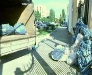 В Харьковской области нашли большую плантацию конопли