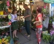 В Харькове пройдет выставка цветов