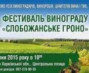 Под Харьковом пройдет фестиваль винограда: программа