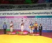 Юные харьковские тхэквондисты завоевали медали чемпионата мира