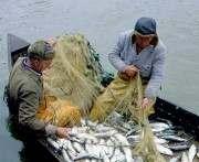 В Украине штрафы для рыбаков могут повысить в десятки раз