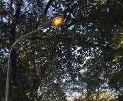В харьковском парке установили новые светильники