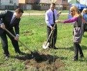 В Харькове посадят тысячу деревьев