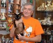 Обнаружились харьковчане, коллекционирующие кошек