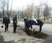 Харьков присоединился ко всемирной инициативе «Деревья мира»