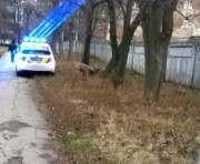 В Харькове возле школы нашли труп
