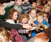 В Харькове прошел праздник «Мы любим зоопарк»