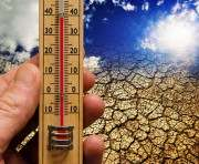 Глобальное потепление принесло экзотические инфекции
