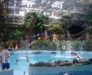 В харьковском аквапарке едва не утонула девочка