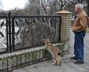 В Харькове по зоопарку гуляет рысь